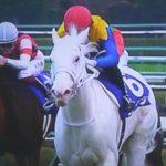 ついに白毛の芝GI馬が誕生したんだな・・。馬券も獲ったぞww(2020年阪神ジュベナイルフィリーズ)【競馬】
